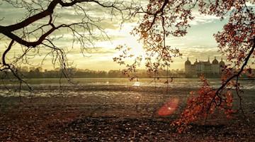 Symbolbild Tourismus in Moritzburg und Sachsen / pixabay mr sweetis